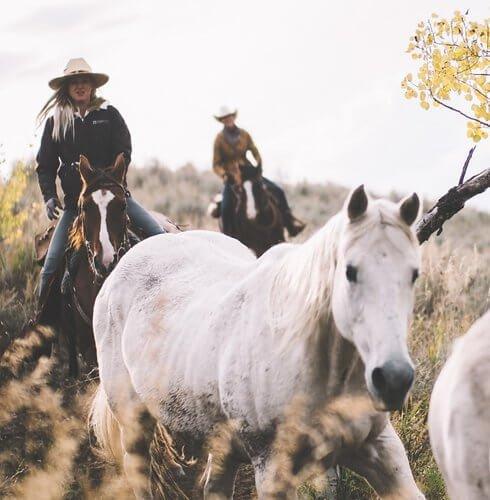 exp-cowgirl-3.jpg
